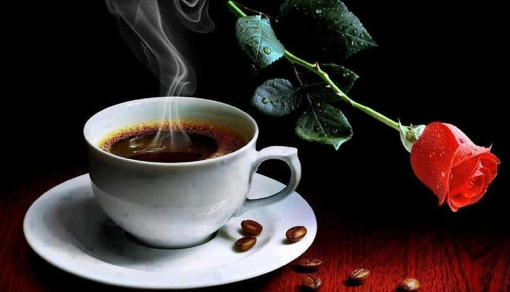 morning coffee and red rose - (#92216) - High Quality and ...