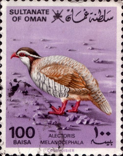 Stamp of Oman. From the 17th century, Oman had its own empire, and vied with Portugal and Britain for influence in the Persian Gulf and Indian Ocean. At its peak in the 19th century, Omani influence or control extended across the Strait of Hormuz to Iran, and modern-day Pakistan, and as far south as Zanzibar (present-day Tanzania).
