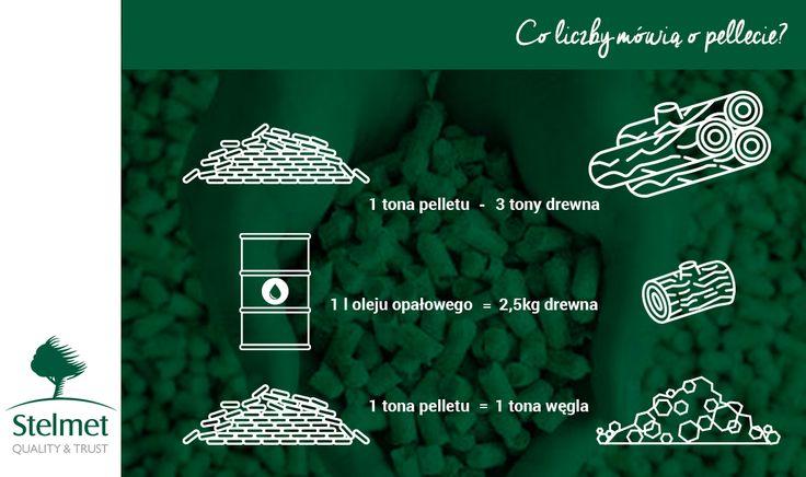 Co mówią liczby o pellecie? Dowiedz się więcej z naszej infograficzki :)