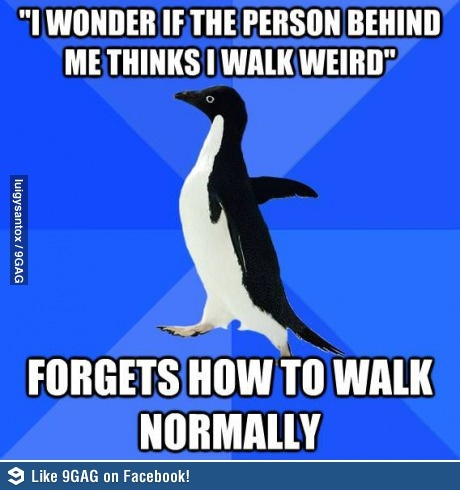 Oh, socially awkward penguin, you never cease to amuse me.  Most likely because I can relate to every single one of your memes.