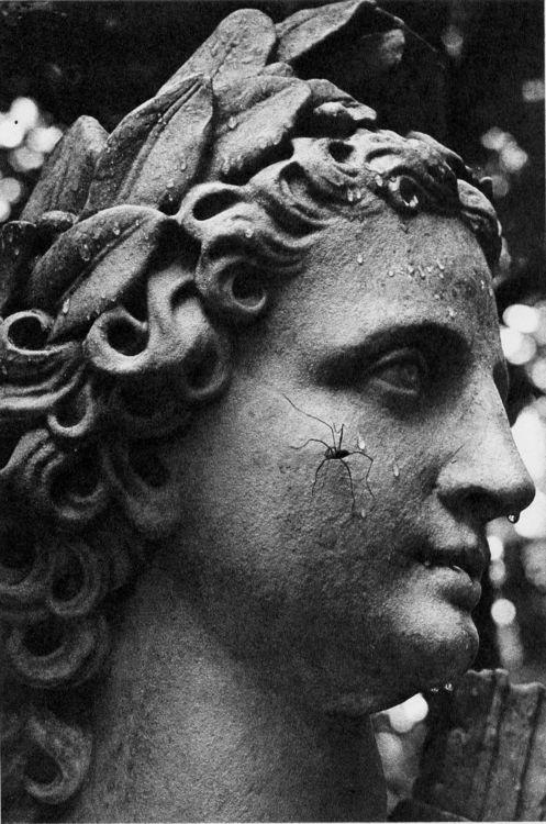 Apollo, Summer Garden, 1988. Photo by Boris Smelov (1951-1998). S)