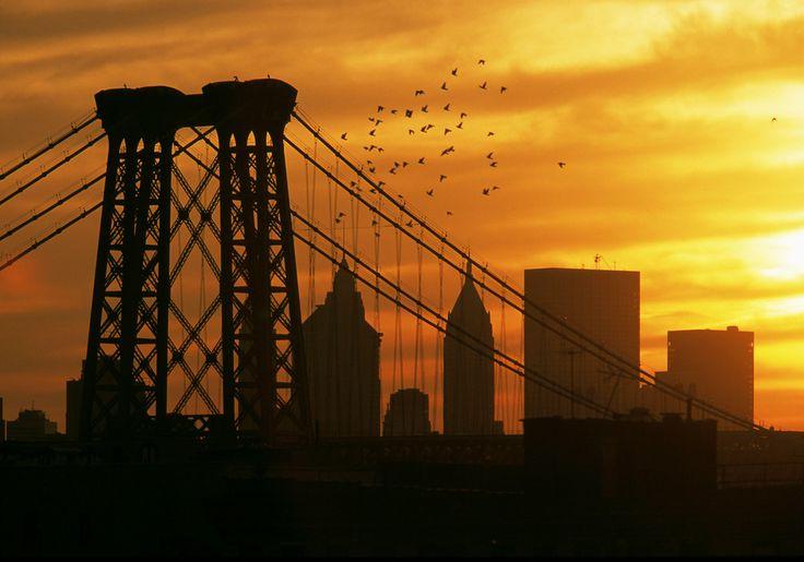 NYC12689.jpg (1005×704)