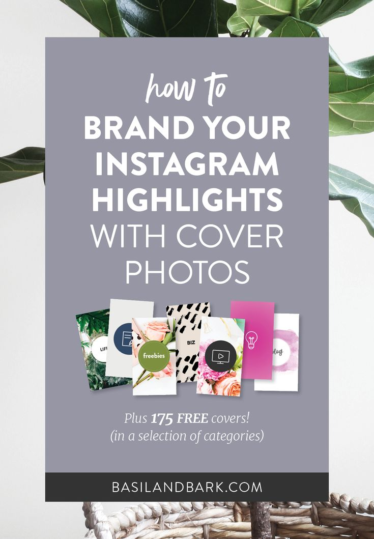 Ever since Instagram launched this new feature several weeks ago, users have been experimenting with different ways to make them work for their brands and businesses. One of the best and most interesting ways to take advantage of the feature is by editing the covers for each of your Highlights. Grab 7 sets of #Instagram Highlight covers and start branding your Instagram profile! // Basil and Bark