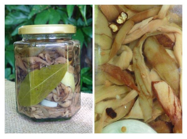 Make it for Christmas: Pickled Eggplant or Melanzane Sotto Aceto e Olio - no cooking required * Get the recipe at TIFFIN - bite sized food adventures
