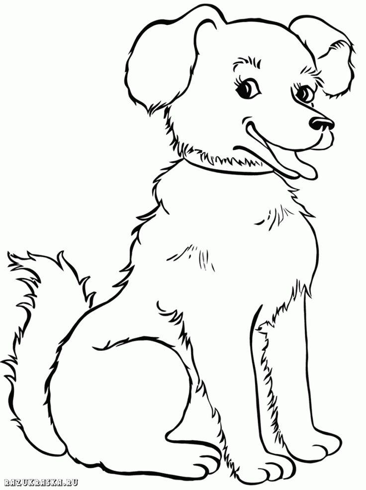 ausmalbilder-hunde-dekoking-com-31