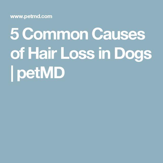 Evista Cause Hair Loss