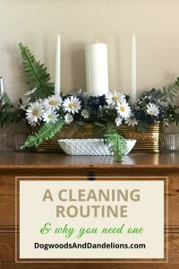 A Cleaning Routine and Why You Might Need One