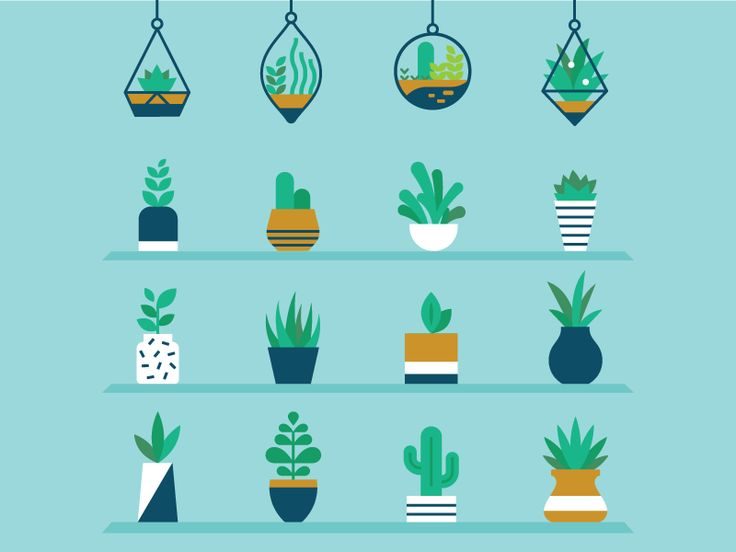 Plants, cactus, design, flat, graphic, graphic design, simple, color theory, seminary,    Plants by Ricky Linn