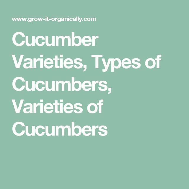 Cucumber Varieties, Types of Cucumbers, Varieties of Cucumbers