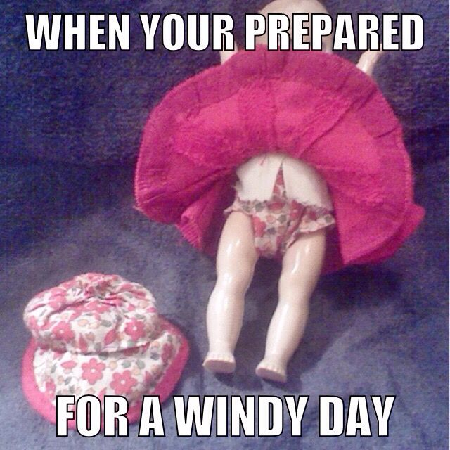 Windy day doll meme | My sense of humor | Memes, Humor, Dolls