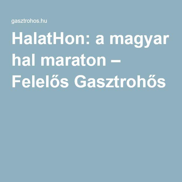 HalatHon: a magyar hal maraton – Felelős Gasztrohős