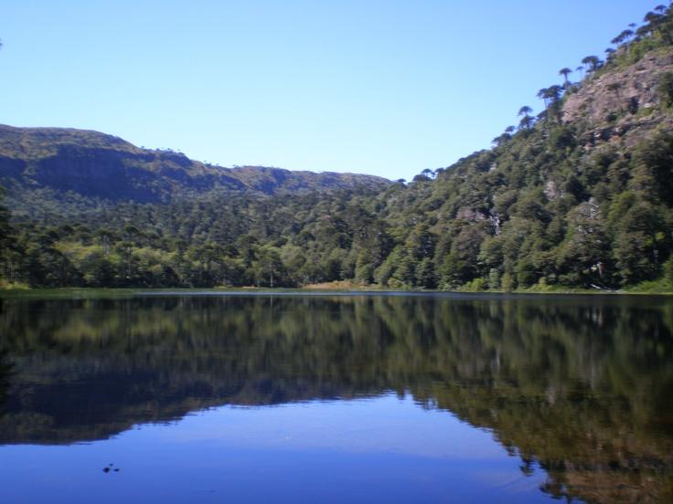 Lago Verde (Tolhuaca National Park)