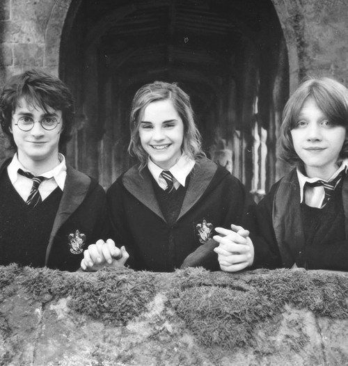 Harry Potter, Hermione Granger, and Ron Weasley~~their friendship