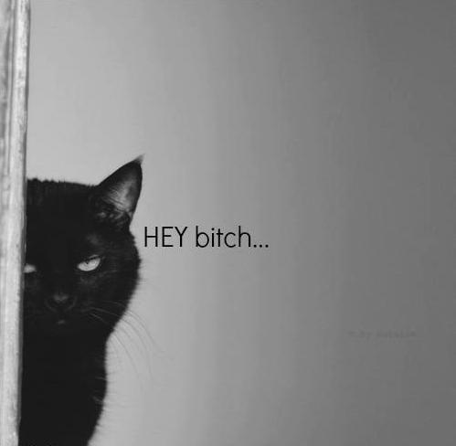 ... hey.