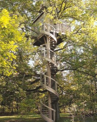 The Spiral stairs Tree House (Rambouillet Forest, France) - a long way up!