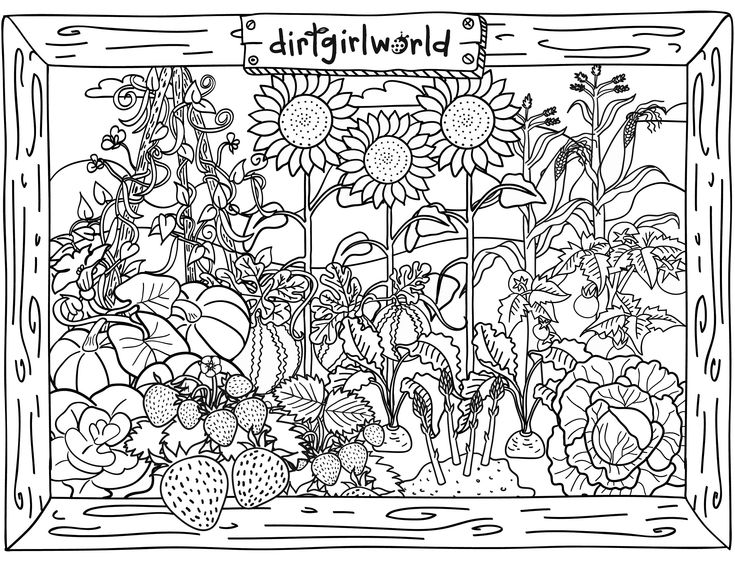 garden winter coloring pages | Dirt Girl World Garden Colouring Page | TEACH: Arts ...