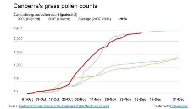 hayfever pollen count canberra