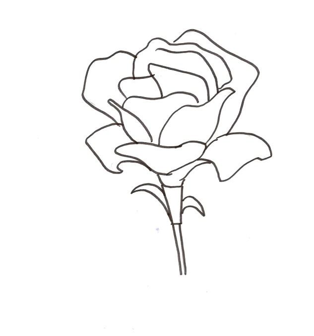 cool flowers coloring pages - photo #15