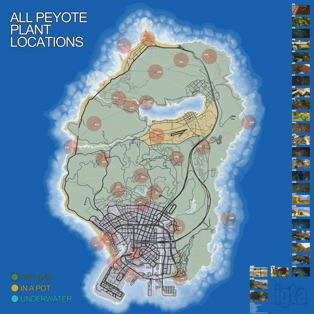 Where To Find All Of Gta V S Secret Peyote Plants Peyote Plant
