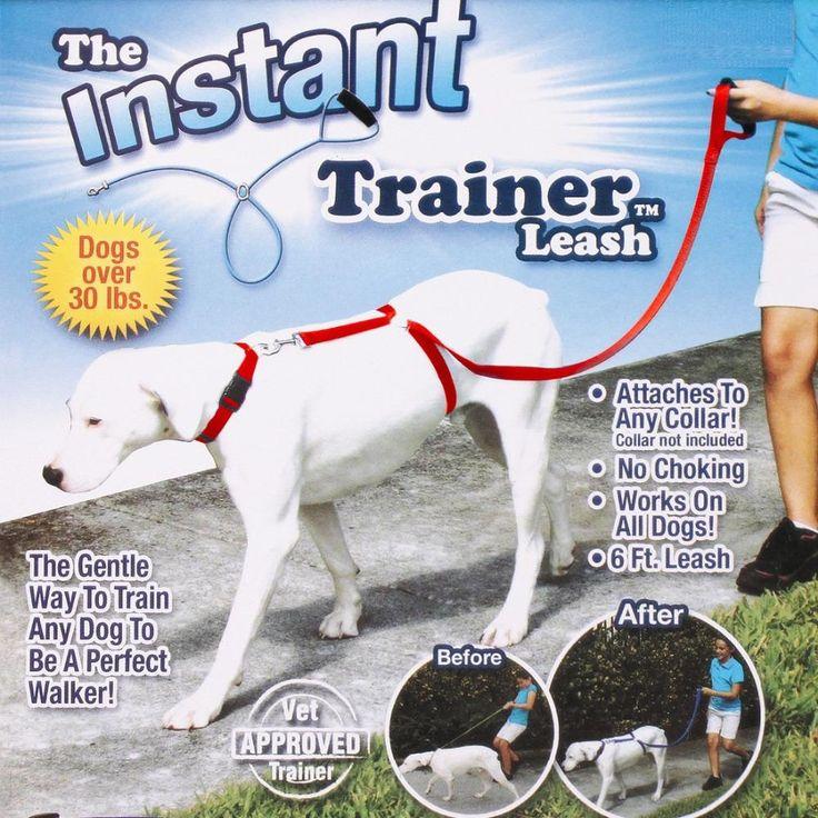 Sofort Trainer Hundeleine Züge Hunde £ 30 Stop Ziehen Tv Dogwalk Heißer