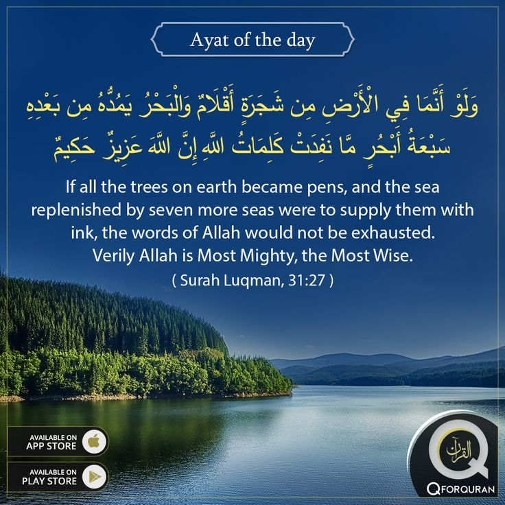 **AYAT OF THE DAY** If all the trees on earth became pens, and the sea replenished by seven more seas were to supply them with ink, the words of Allah would not be exhausted. Verily Allah is Most Mighty, the Most Wise.  (Surah Luqman, 31:27) #AyatOfTheDay #Quran #QforQuran