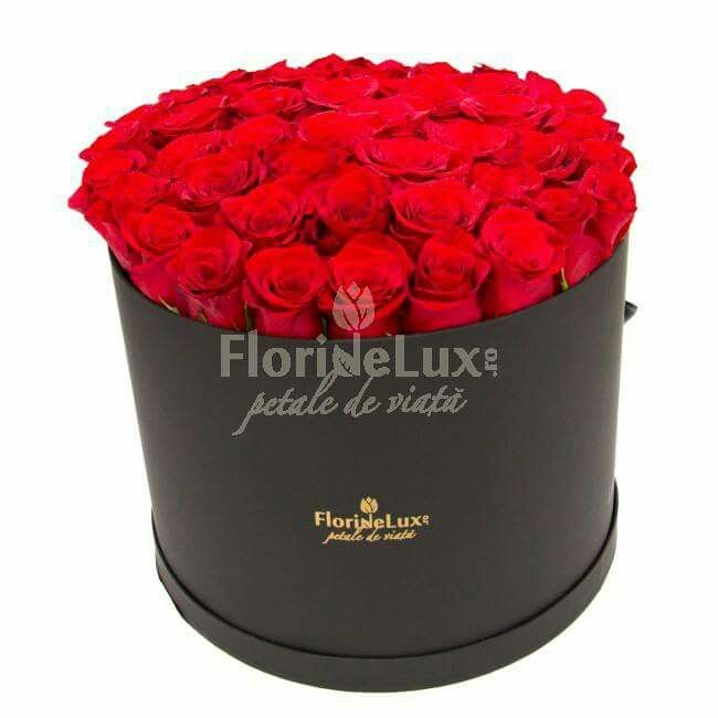 Box with 47 red roses! A biiig box full of great red roses! A special gift 😍😍
