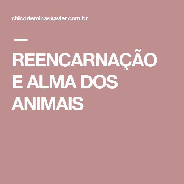 — REENCARNAÇÃO E ALMA DOS ANIMAIS