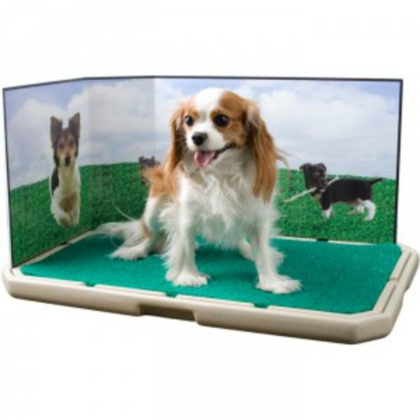 Piddle Place Portable Indoor Puppy Dog Potty Woof Them Cat Friends Can 39 T Make Fun Of Us Now