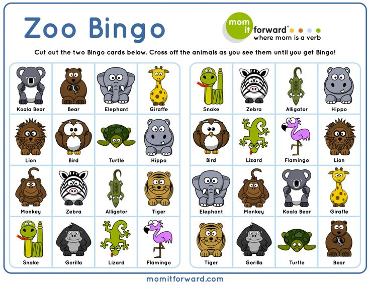 adorable zoo bingo free printable to help your family play get active and get