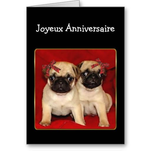 Joyeux anniversaire Birthday Pugs card