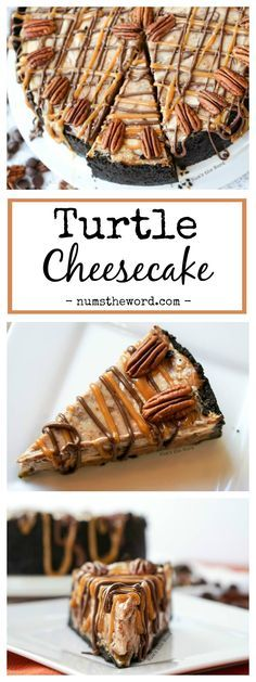 Turtle Cheesecake  Turtle Cheesecake  A chocolate swirl cheesecake with a layer of caramel and pecans held together with a Oreo cookie crust. http://ift.tt/2ijNwFF