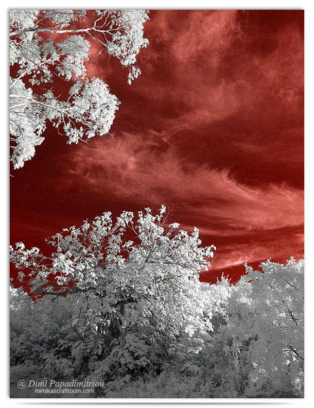 Red Sky - infrared by LightSculpting.deviantart.com on @DeviantArt