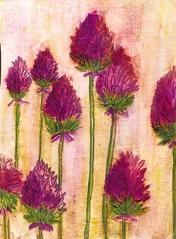 Red-violet flowers by Frances Pickering