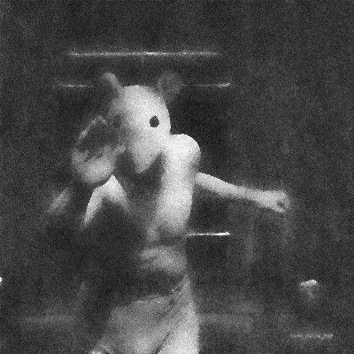Slow Pulse Boy Portrait of a Fox, Limited Edition 1/10