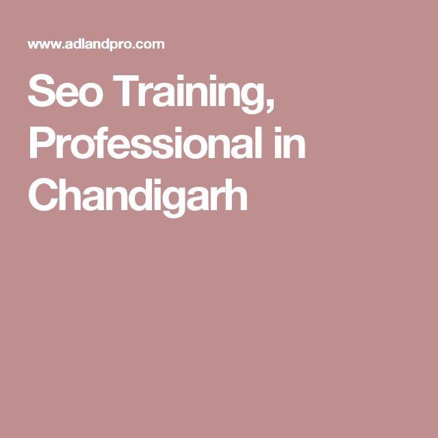 Seo Training, Professional in Chandigarh