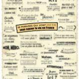 Poster vocabulaire A1-A2 : 50 phrases qui vont vous sauver la vie en France ( BONUS)