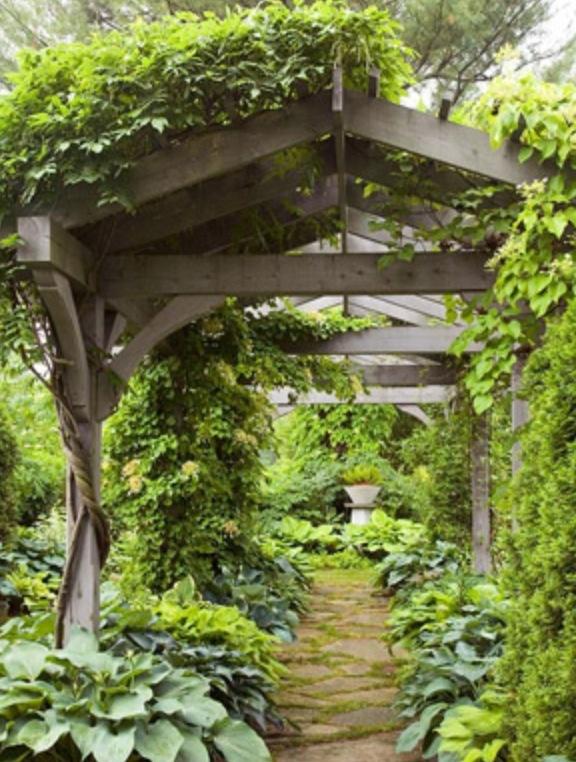 Covered walkway arbor trellis through woods wooded