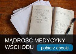 E-booki prof Enji, książki, artykuły, publikacje (Enkhjargal Dovchin)