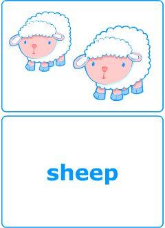 Singular vs. Plural Nouns