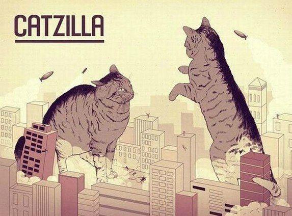 #cat #humor #architecture