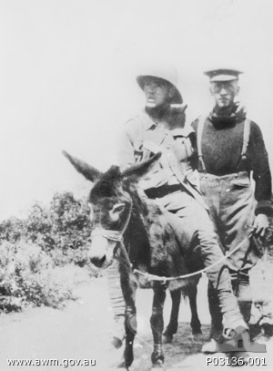 Simpson's Donkey - Gallipoli WWI The man in the photograph, to add to the confusion, was New Zealand medic Richard Henderson, who took over Simpson's work after he was fatally shot.