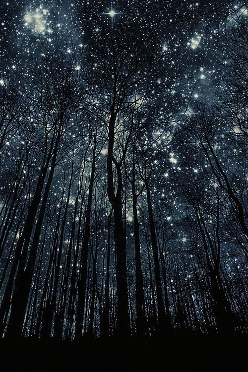 Extraordinary Starry Night ★☆★
