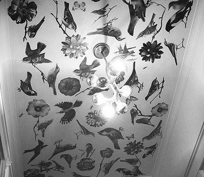 Decoupage your ceiling: Idea, Hallways, Mod Podge, Apartment Therapy, Decoupage Ceilings, House, Birds, Howto, Diy Projects