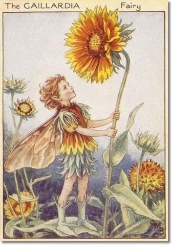 Help please 500 word essay on fairies?