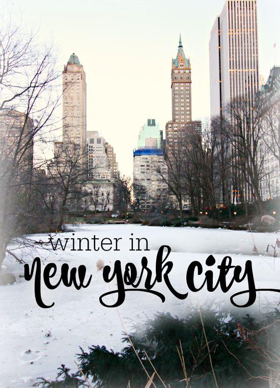 Best 25 new york winter ideas on pinterest new york for New york city day trip ideas