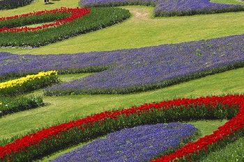 Flower Bed Designs and Ideas