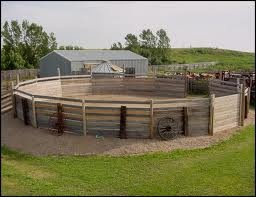 Wood Round Pen.... exactly what I want so my kids can practice keeping their hogs off the fence for 4H sho  purposes