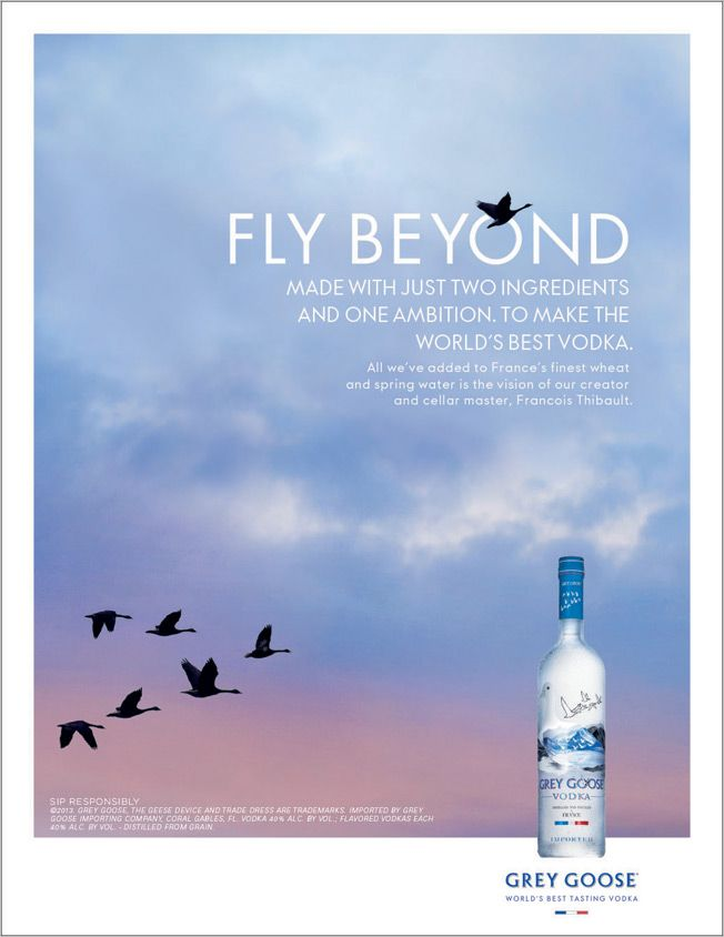 Ad of the Day: Grey Goose's François Thibault Is Vindicated in WPP's 'Fly Beyond' Campaign | Adweek