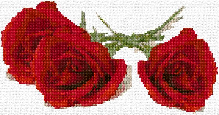 Three Red Roses Free Cross Stitch Pattern