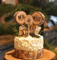 Tree Slice Cake Topper / Mr & Mrs